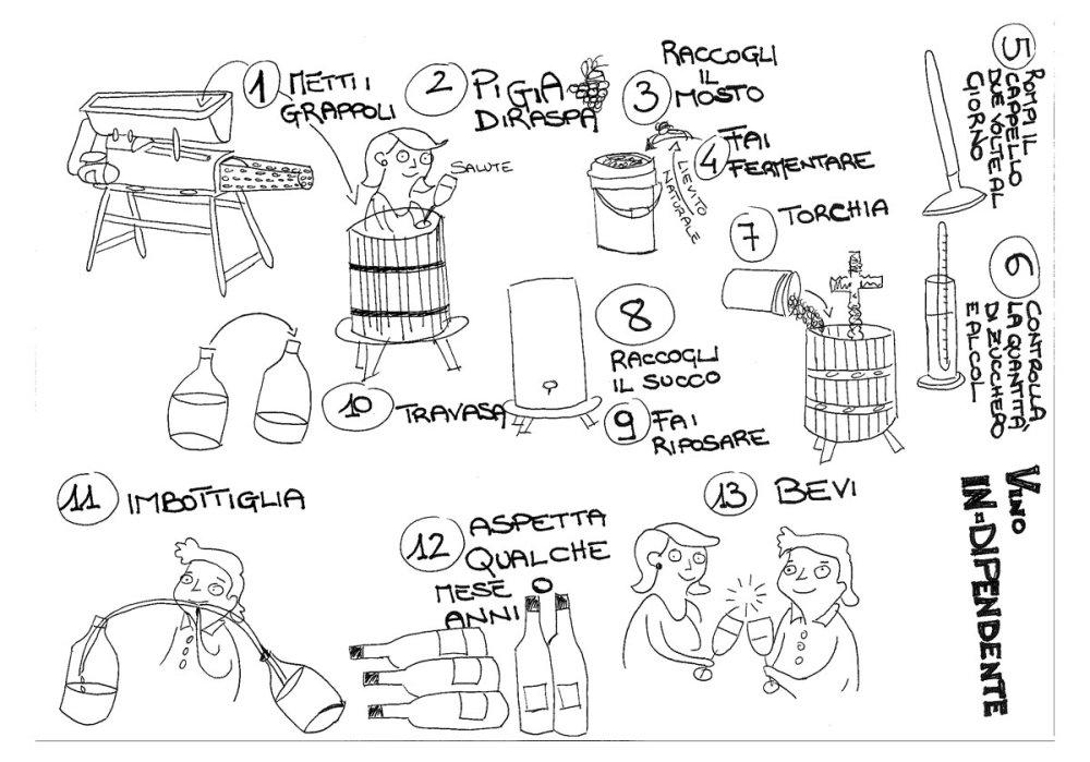 vino-naturale-processo-lavorazione-2019
